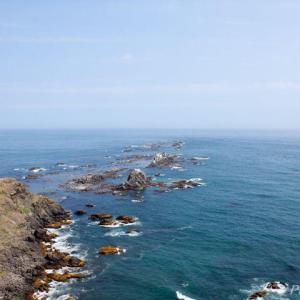 襟裳岬:アザラシのいる岬2