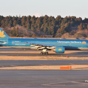 既に退役している懐かしいベトナム航空のBoeing777-200ER、そして白駒池苔の大木