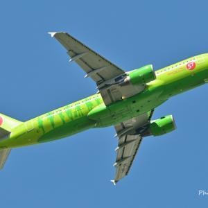 好きだった以前のS7 Airlinesのデザイン、そして岡山後楽園にて