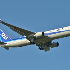ANAのBoeing767-300ERが成田空港RWY34Lへ到着します。そしてトンボ君見っけ!