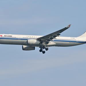 中国国際航空機が川崎沖をファイナルアプローチ、そして港の見える丘公園の鉄砲ユリと