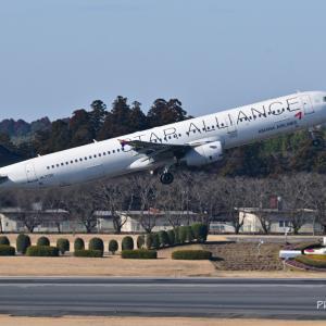 スターアライアンスデザインのアシアナ航空Airbus A321-200、そして我が家のホトトギスが咲きはじめました。