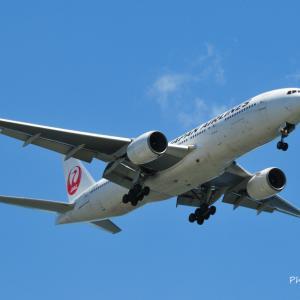 日本航空Boeing777-200、城南島上空をアプローチ、そして白駒の森のチシマシッポゴケ