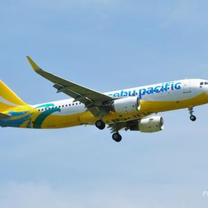 """セブパシフィック航空のAirbus A320-200が到着です。そして、我が家のホトトギス""""満天の星""""が咲き始めました。"""