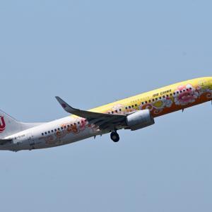 中国国際航空のYellow Peony が出発しました。そして我が家のホトトトギス「おもかげ」