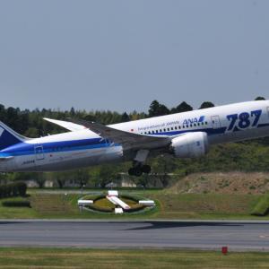 """""""787""""ロゴ入りANAのBoeing787-8がTake off、そして我が家に咲く日本さくら草"""
