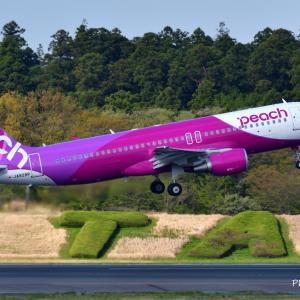 ピーチアビエーションのAirbus A320-200が気持ちよさげにTake off、そして鎌倉明月院の枯山水