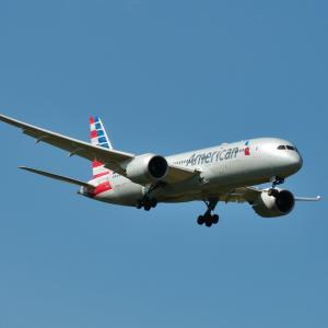 アメリカン航空Boeing787-8が成田空港に到着します。そして沖縄のハイビスカス