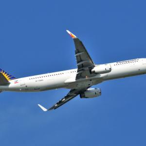 フィリピン航空Airbus A321-200が離陸しました。そして北鎌倉明月院の枯山水