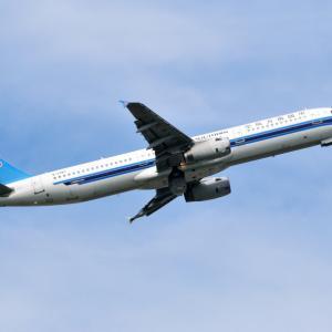中国南方航空のAirbus A321-200がゆったりと上昇中です。そして新江の島水族館のミノカサゴ