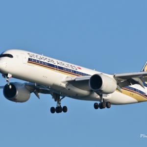 シンガポール航空のAirbus A350-900が到着です。そして横浜三渓園の古代蓮