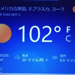 ★★★ ちょっと暖かい日とナニガシ ★★★