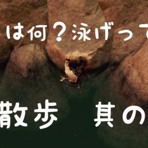 【Ghost of Tsushima】仁散歩【其の十】