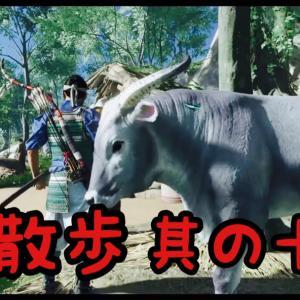 【Ghost of Tsushima】仁散歩【其の十四】
