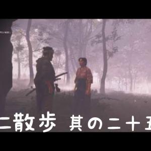 【Ghost of Tsushima】仁散歩【其の二十五】