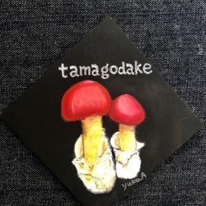 きのこの世界♪タマゴダケと鯵の甘辛生姜焼き
