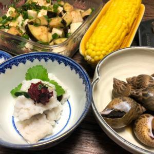 木津市場で買ったもので晩ご飯!鱧が美味しい