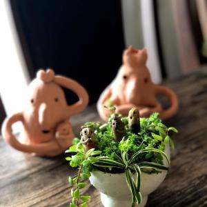 娘作 ネギ塩丼〜秋のお汁付き。寄せ植え埴輪ちゃん。