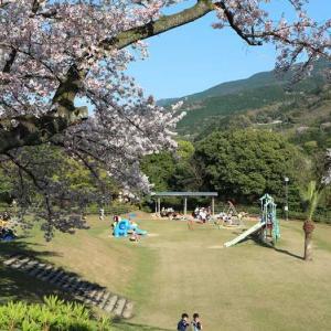 令和二年四月五日、三島公園