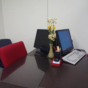 面談室に水仙飾りました