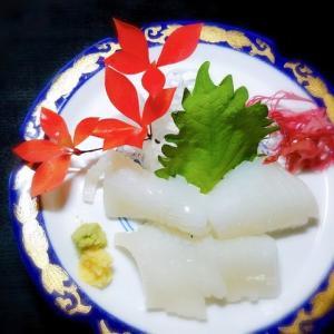 真イカの刺身は、八戸で食うべし