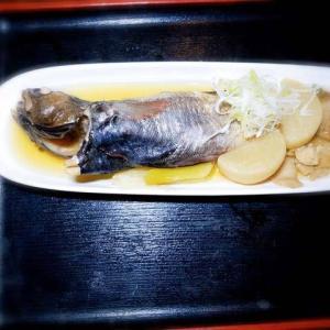 人は見かけによらぬもの、魚も見かけによらぬもの。びっくり「ドンコ」の煮付けは超美味