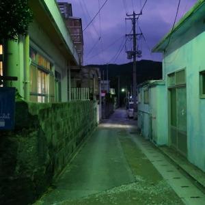 04/10 沖縄のもずく