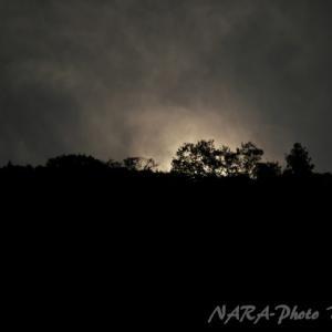 奈良公園で星見 vol.54 三笠の山に出でし月