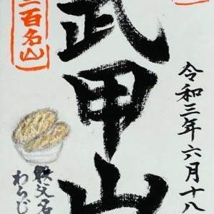 武甲山とわらじカツ丼