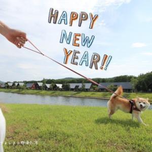 HAPPY NEW YEAR 2019♪