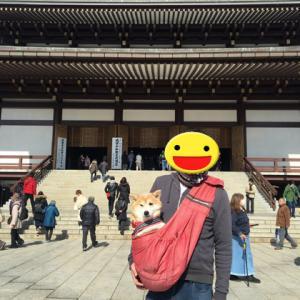 成田山新勝寺 & 駿河屋のうなぎ♪