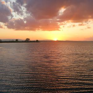 湖の夕雲と猫と白い月、トラジメーノ湖