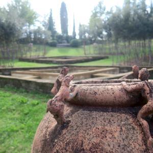 瞑想の美しい森と落し物、Bosco della Ragnaia