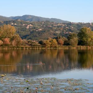 秋色の聖なる渓谷