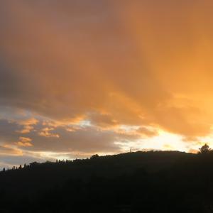 思いがけず美しい夕焼けと一段落