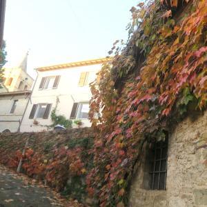 紅葉の美しい村の城壁めぐり、ベヴァンニャ