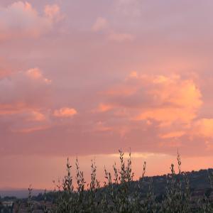 桃色の夕焼けと月とハンバーガー