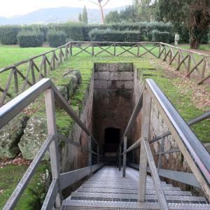 美しいエトルリア墳墓と城とイノシシ、チェルヴェーテリ