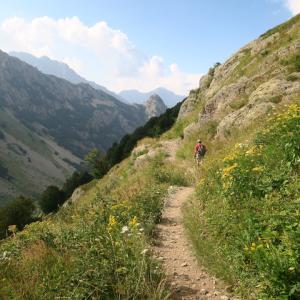 アルプスの山が呼んでる、実写映画『ハイジ』とマリッティメ・アルプス