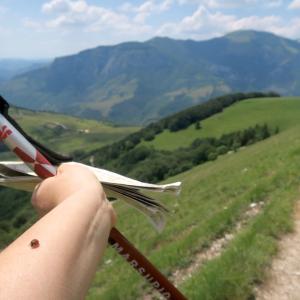 眺めよし攻撃びっくり魔女の山 Monte della Strega