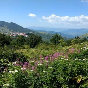 眺めもいいアッペンニーニ植物園、モリーゼ カープラコッタ