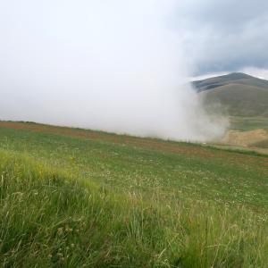 花畑しのび寄り包む霧カステッルッチョ