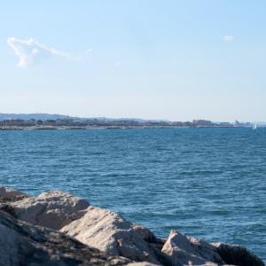青い海にぎわう砂浜セニガッリア
