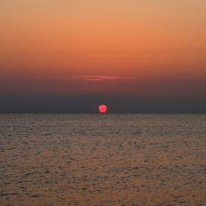 だるま朝日アドリア海に昇るモリーゼの浜