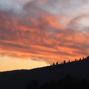 燃え上がる夕雲と猫とゴルゴンゾーラ