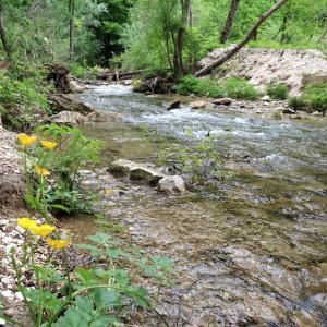 清らかな渓流へ花満ちる山を下って、シビッリーニ山脈 フィラストローネ渓谷