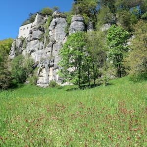 花咲く森歩いてラヴェルナ修道院へ