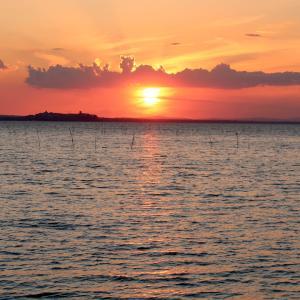 夕日燃えてゆく湖とカンムリカイツブリ、トラジメーノ湖