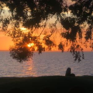 夕焼けと食楽しめる湖畔の店、トラジメーノ湖