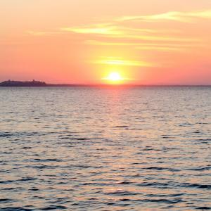 夕日と猫とトラジメーノ湖